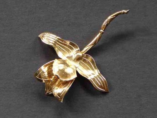 Aguilar flower