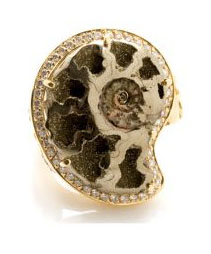 Ludivine Ammonite ring