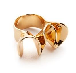 elizabeth-and-james-arp-ring