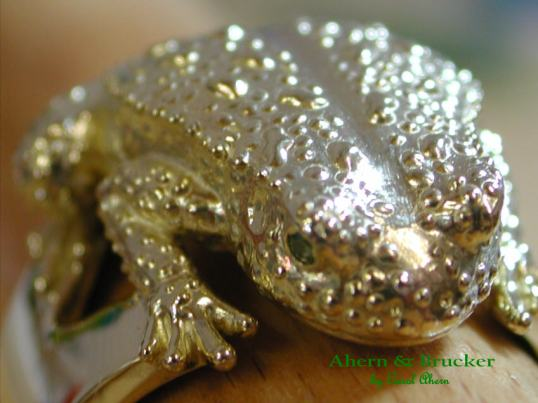 ahern-and-brucker-frog-pill-box-ring